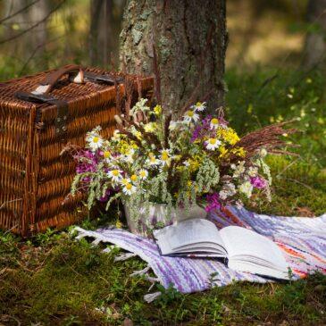 Plockmat till avslutning, knytis eller picknick